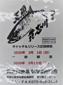 P2034808 (3).JPG