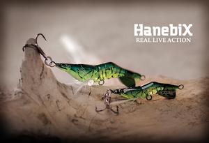 hanebix-image22.jpg