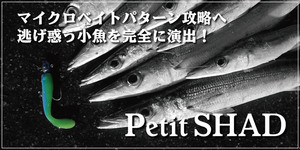 petit_top.jpg